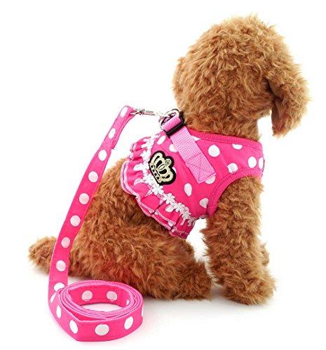 SELMAI XY000301-Pink-L