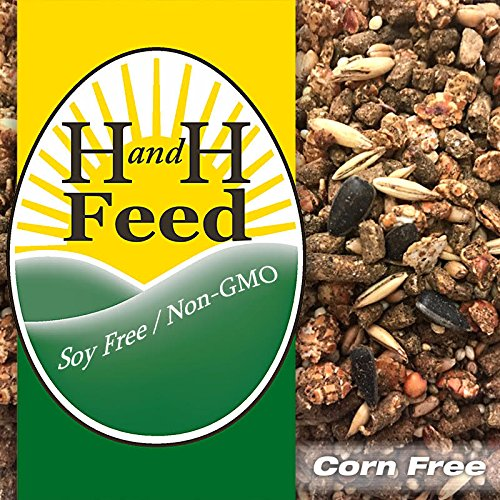 H and H Feed Green Label Grain-Lay 19%