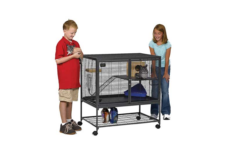 Best-Ferret-Cage-Reviews