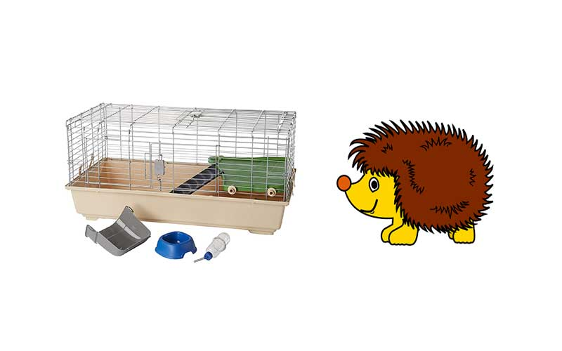 Best-Hedgehog-Cage