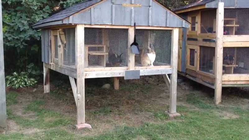 Rabbit-Hutch-Plans