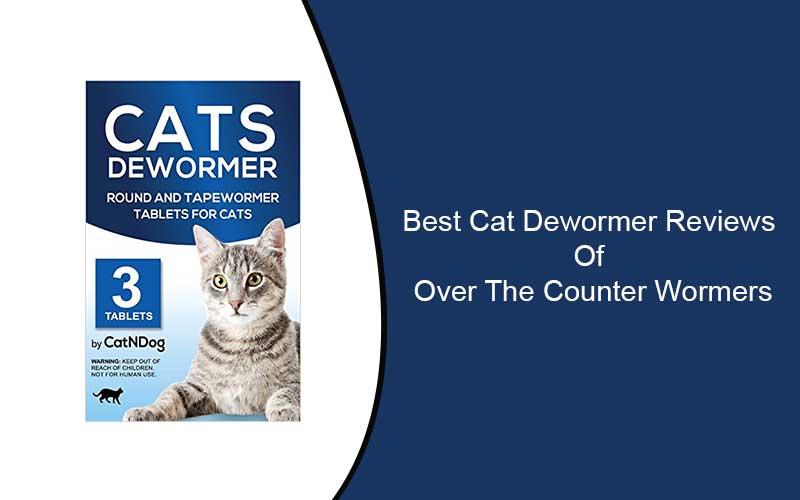 Best-Cat-Dewormer-Reviews
