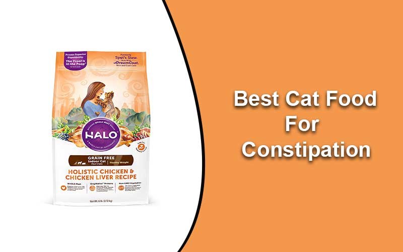 Best Cat Food 2020.Best Cat Food For Constipation Reviews And Guide 2020