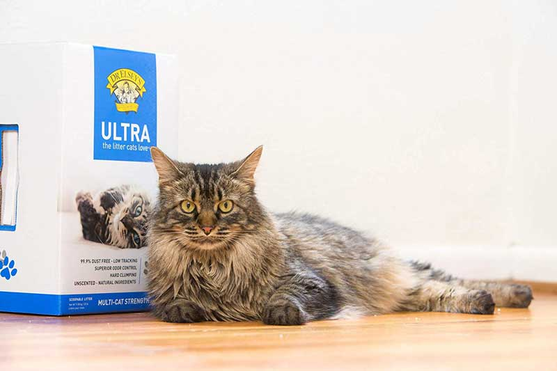 Best-Non-Tracking-Cat-Litter-Reviews