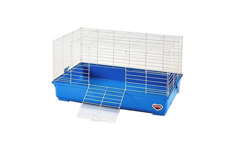 How-To-Keep-Guinea-Pig-Cage-Clean