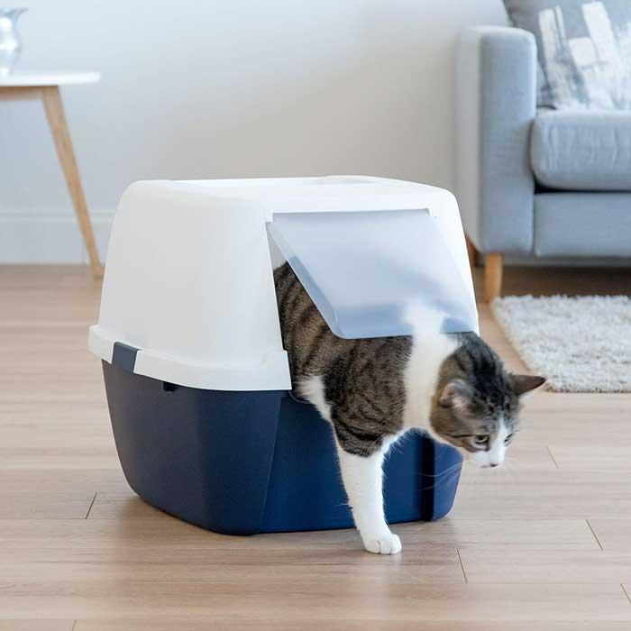 Cat-Litter-box-Size-&-Dimensions