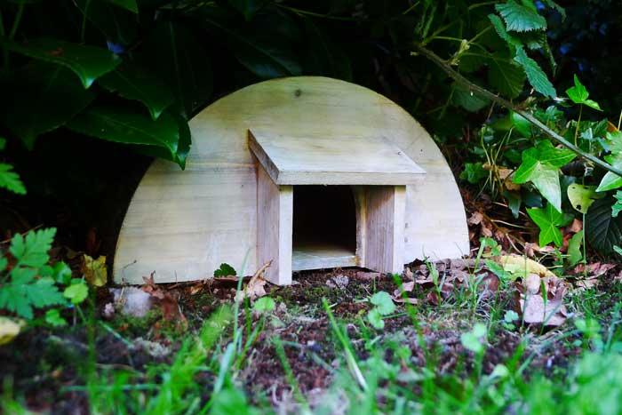 hedgehog-housing
