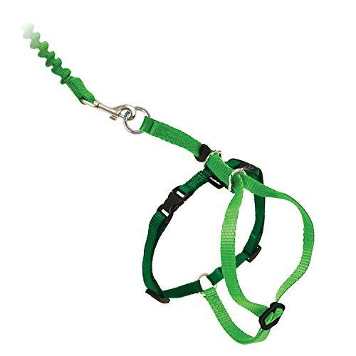PetSafe Harness and Bungee Leash