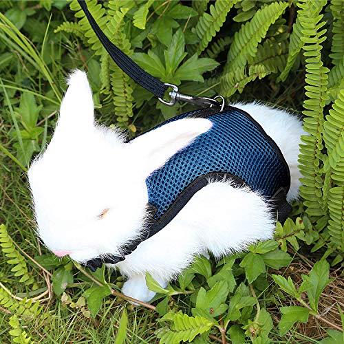 Pettom Pet Rabbit Harness Leash